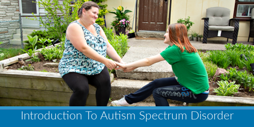 Kerry's Place - (FFS) Introduction to Autism Spectrum Disorder - Online